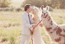 Unique Wedding Ideas / Think outside the box and go for something unusual with these striking unique wedding ideas