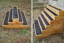 Stepbox / Plante