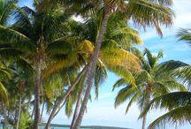 ΤΑΞΙΔΙΑ: Μπαχάμες