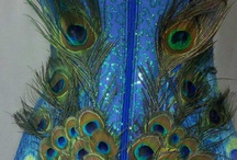 Peacock Costume / Halloween costume brain storming / by Terri Ann Swallow