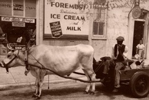 Historic Fernandina
