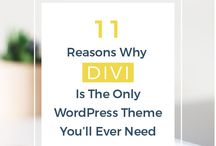 DIVI—All The Things / All thing DIVI not covered in my oether boards.