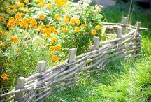 Typy ogrodów - inspiracje