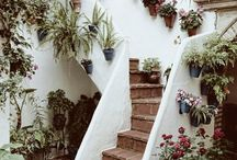 Garden Stairs, Pathways & Arches