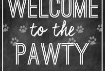 Caitlyn's 4th Birthday / Paw Patrol Party