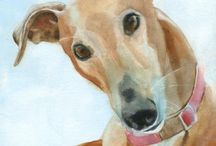 Greyhounds & other sight hounds / by Victoria Thor