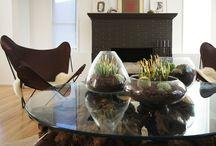 Making My House A Home / by Stephanie Anastasakis