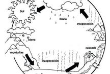 Proyecto ciclo del agua