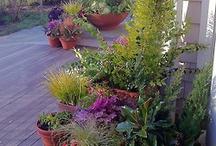 Awesome Gardening Stuff