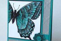 swallowtail - SU!