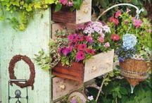 gardens & zahrádky