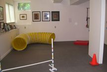 Indoor Dog Playroom