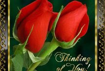 obrázky- kvety