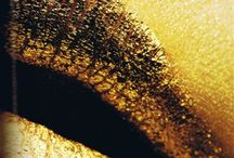Gold / by Alessia Moodie