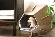 Casa de mascotas / Innovadoras casitas para perros y gatos.