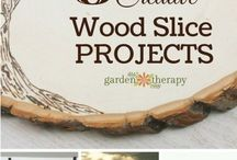 Tree trunk crafts