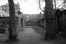 spooky/graveyard