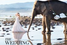 Event Design + Styling / Event design, event decor, santa barbara wedding, elephant wedding, elephant, event coordinating, wedding style, bride to be, wedding inspiration, outdoor wedding, beach wedding, wedding ideas, luxury wedding