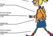 Salud y Seguridad ciclista