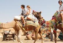 Royal Rajasthan Trip