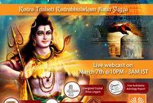 Maha Shivratri Special ritual - 2016 / Maha Shivratri 2016 - Rudra Trishati Rudra Abishekam Homam