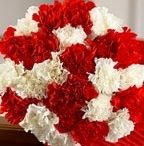 Send Flowers to Hyderabad / Hyderabad is famous for colorful things such as colored music, colored Hyderabad cuisine and culture. Flowers have some colors, beauty and fragrance where it is used as sign of love care. It is possible that any one of your friend, relative or friend is staying in Hyderabad so, if you want to send a gift to them then online flower shops are the best suitable option for you to send flowers to Hyderabad online.  http://www.flowersbuds.com/