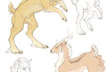 Animal concepts