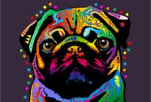 SPCA + Animals / We love animals! Supporting SPCA, against animal testing and battery farming