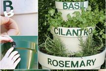 Herb Planters / Container gardening with herbal plants is an easy alternative to keeping a formal herb garden.