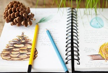 Naturjahresbücher und kalender