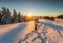 Quer fugir do calor? Confira duas dicas para curtir o inverno europeu!