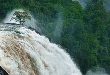 Waterfalls of Kerala / Kerala a small state in India with a length of less then 600 Km is  blessed with 44 Rivers and so has a lot of exotic waterfalls