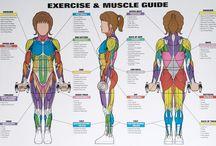 Training, lifting stuff and crossfit