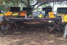 Vintage wagon / Vintage old wagon wheels (oak & iron)
