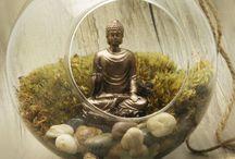 Buddhist garden / by Steven Binns, Jr.