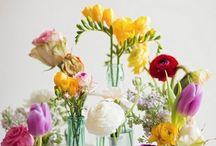 Blomsterarr, små