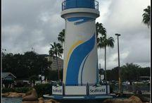 Orlando Area Experiences