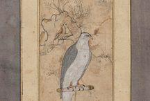 Minyatür de Kuş