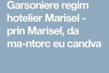 Garsoniere regim hotelier Marisel