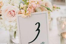 Wedding Shared