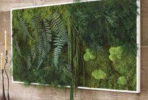 Панно из зелени