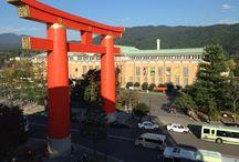 Kyoto / where I live.