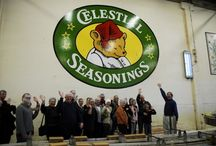 Culinary tours in the US / Awesome foodie tours in the US