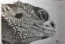 Állat rajzok / állatrajzok, állatos rajzok, animal drawings