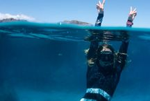 Diving and the under water world