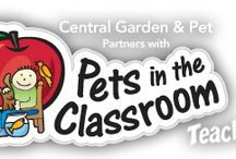 Curriculum Ideas Using Classroom Pets / by Pets in the Classroom Grant Program