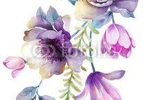 Illustrazione di fiore