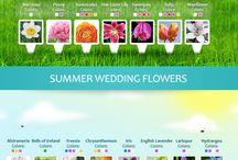 Floral checklist