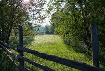 Excursie Transrarau - Bucovina vazuta altfel