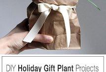 DIY Plant Hacks / 0